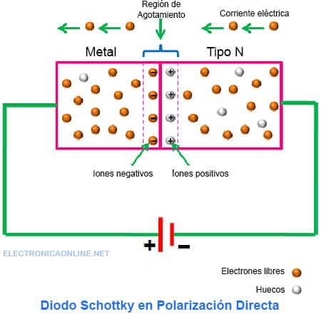 polarizacion directa diodo schottky